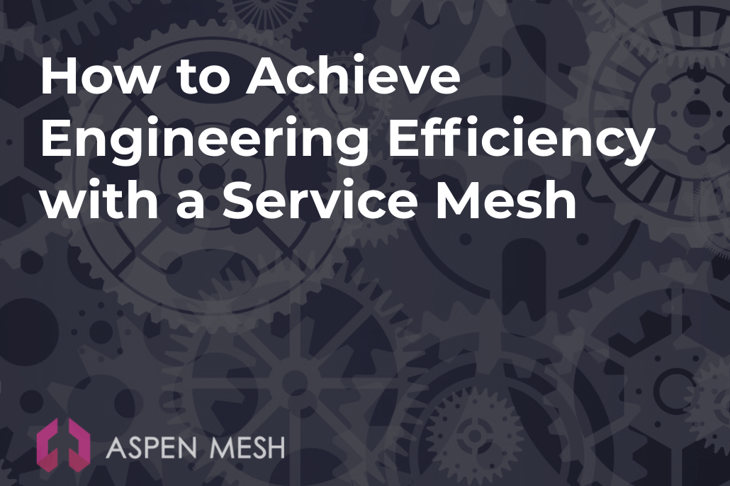 How to Achieve Engineering Efficiency with a Service Mesh